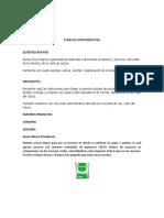 INGENIO PROVIDENCIA.docx