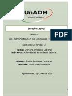 ADEL_U3_FR_IMBC.docx