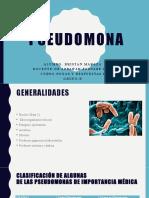 Pseudomona Expo