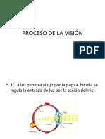 1. PROCESO DE LA VISIÓN EXPOSICION