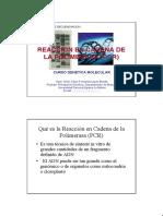 DIAPOSITIVA PCR 2003a.pdf