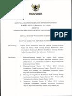 KMK No. 312 Th 2020 ttg Standar Profesi Perekam Medis.pdf