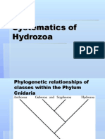 systematics of Hydrozoa