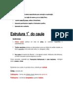 CADERNO BG 3