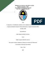 NIVELES O DIMENCIONES DEL RA.pdf