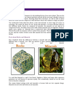 Rocks and Minerals.docx