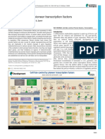 Pioneer Transcription Factors in Cell Fate Control