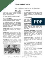 E2_POUL2.pdf