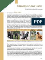 pdf-noticias_20.pdf