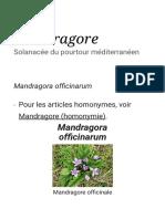 Mandragore — Wikipédia.pdf