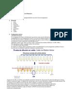 Informe Antibiograma, gabriel Palomares Humanes