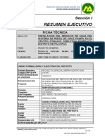 2)  Resumen Ejecutivo - Ficha-