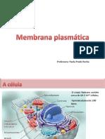membranas 1