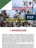 Manejo Agronomico del Cultivo de Algodon
