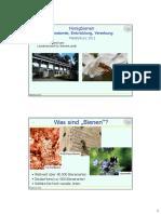 Meisterkurs_Anatomie_Entwicklung_Nov2011_01.pdf