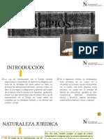 PRINCIPIOS CONTRATACIONES.pptx