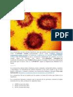 Qué es el nuevo Coronavirus