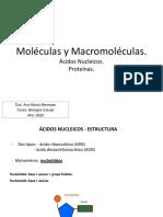 Clase 2 Estructura y función de biomoléculas II 2020.pdf