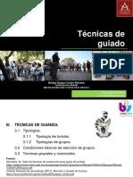 UNIDAD III. TECNICAS DE GUIANZA