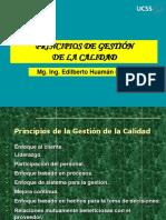 Principios de Gestion de Calidad 3.pdf