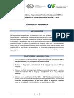 TdR_Consultora_BIM_1.pdf