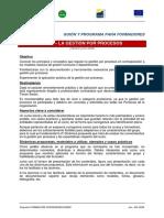 Programa_curso__Gestion_por_Procesos