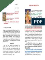 terco-da-libertacao.pdf