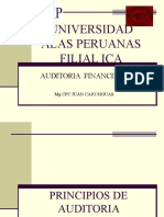 2 PRINCIPIOS DE AUDITORIA FINANCIERA