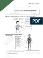 EL CUERPO HUMANO PROFE JOSE.pdf