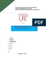 ESTRUCTURA-INFORME-FINAL-2019 juan.docx