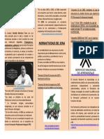 Plegable - Historia del Sena.docx