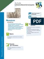 pro_aula_despues_ancestros_interav.pdf