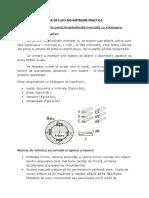 3. FISA DE LUCRU- M3 INSTRUIRE PRACTICA-ASAMBLARE PRIN PANA.doc