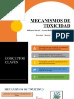MECANISMOS DE ACCIÓN DE LOS TÓXICOS FINAL  PARTE MODIFICADA GEO MAS LA DE JAVIER(1).pptx
