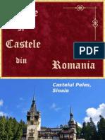 Castele Si Palate Din Romania Adriana Celendo
