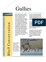 Bluff Conservation - Gullies