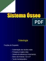 03 - Sistema Ósseo
