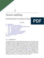 Neuron modeling Rattay-Greenberg-Resatz