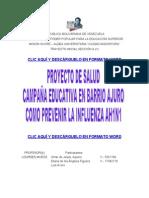 Proyecto Comunitario de Salud