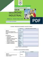PRACTICA 03 TALLER IMPLEMENTACION DEL SGSST-PHVA-ETAPA  (1).pdf