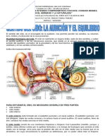 GUIA DEL OIDO.pdf