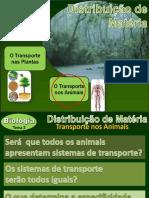 Transporte nos Animais 2