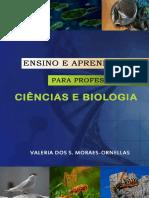Ensino_e_Aprendizagem_para_Prof.pdf