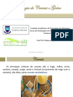 Aula 2 - cereais, pseudocereais, leguminosas e oleaginosas