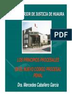 CSJHA_D_PONENCIA_PRINCIPIOS_PROCESALES_NCPP_16082012