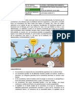 CICLOS-BIOGEOQUIMICOS-ECOSISTEMAS-CADENA-TROFICA