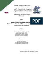 practica 1 reporte.pdf