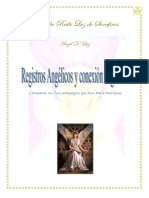 Manual Registros Angélicos(1).pdf.pdf