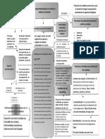 Actividad 2 evidencia 1 mapa conceptual.docx