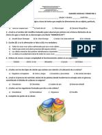 EXAMEN BIOLOGIA TRIMESTRE 2